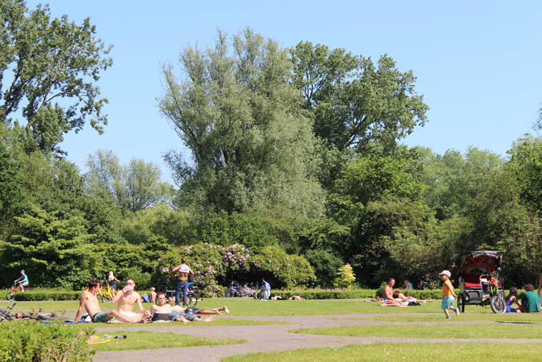 my Amsterdam picnic party in Vondel Park