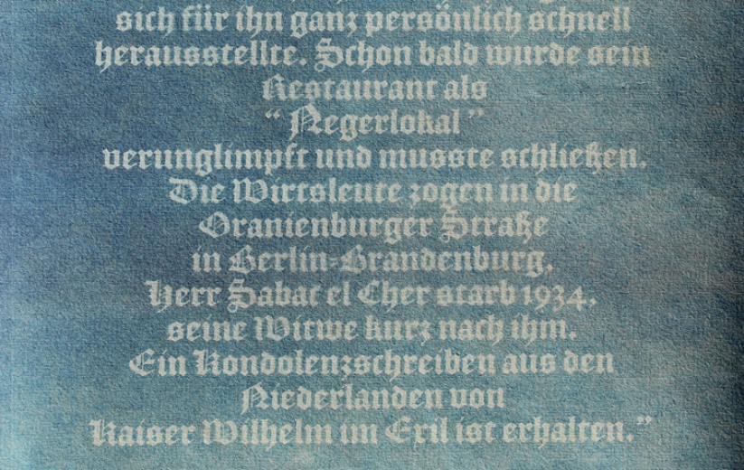 Guten Morgen Preußen / Good Morning Prussia, Cyanotype Detail