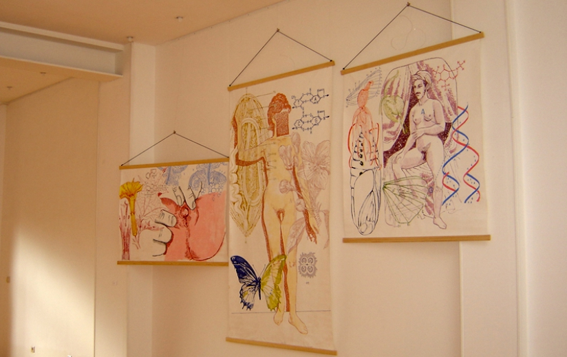 Science of Beauty, Gallery installation view